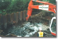 Cleaning contaminated Soil